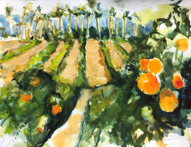 Riverside Orange Groves