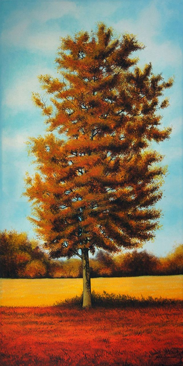 Late Summer Tree