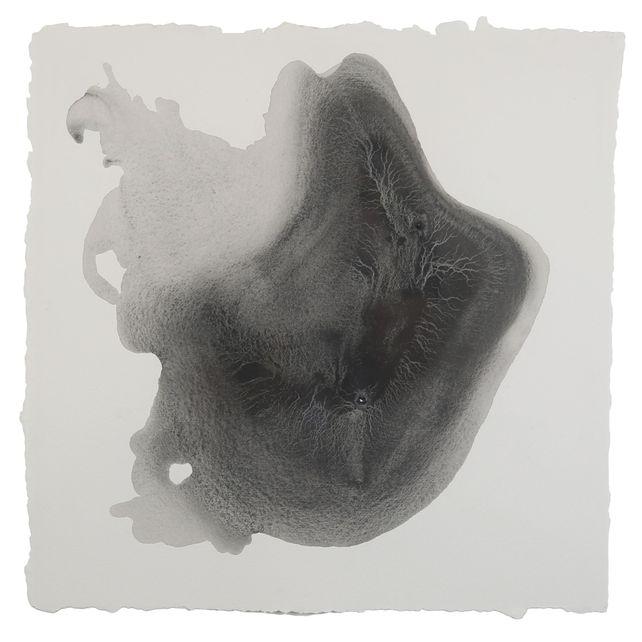 Sediment #5