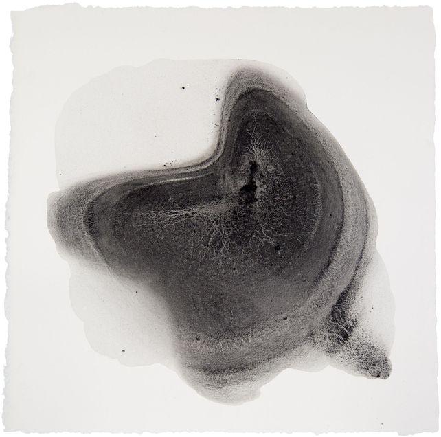Sediment #9