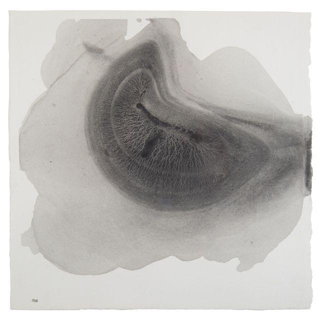 Sediment #6