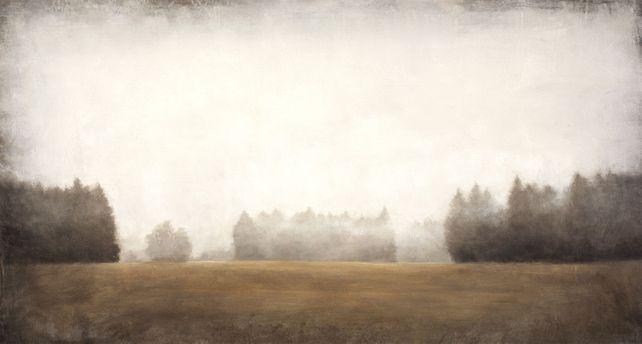 Distant Trees 201119