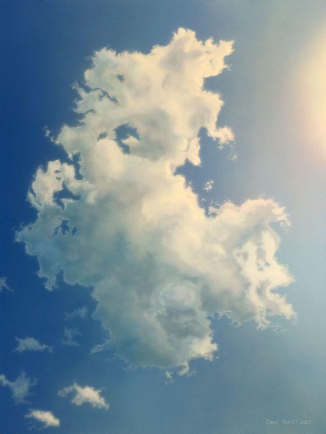 Portrait of a Cloud