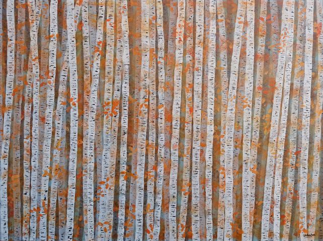 Silver Birch Autumn Colours