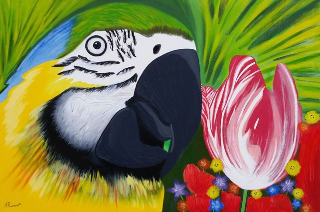 Bird of Paradise | 36 x 24 IN