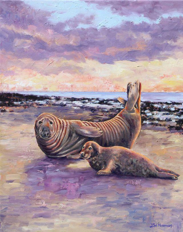 Grey Seals at Horsey
