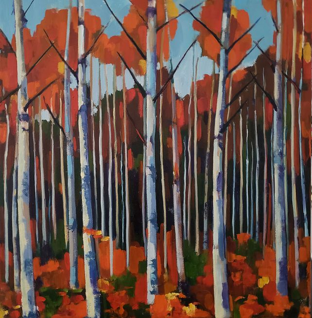 Small Birch Forest