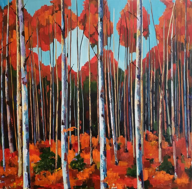 Large Birch Forest