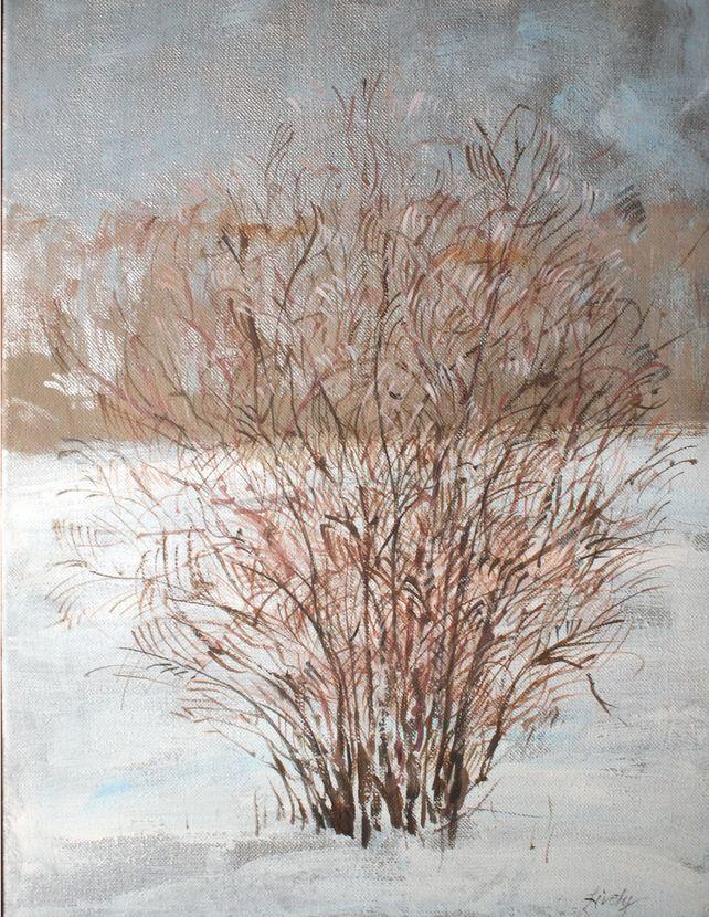 Forsythia in Winter
