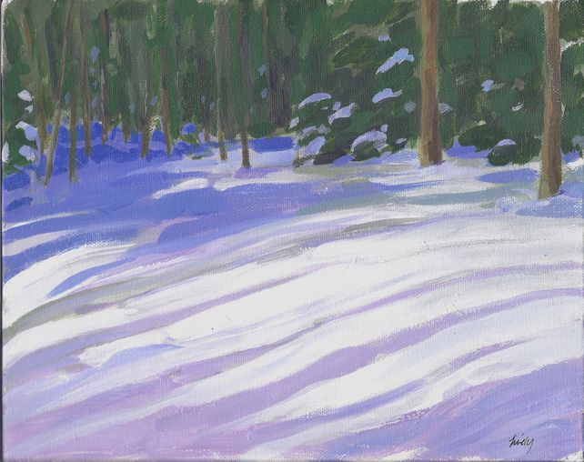 The Woods in Winter