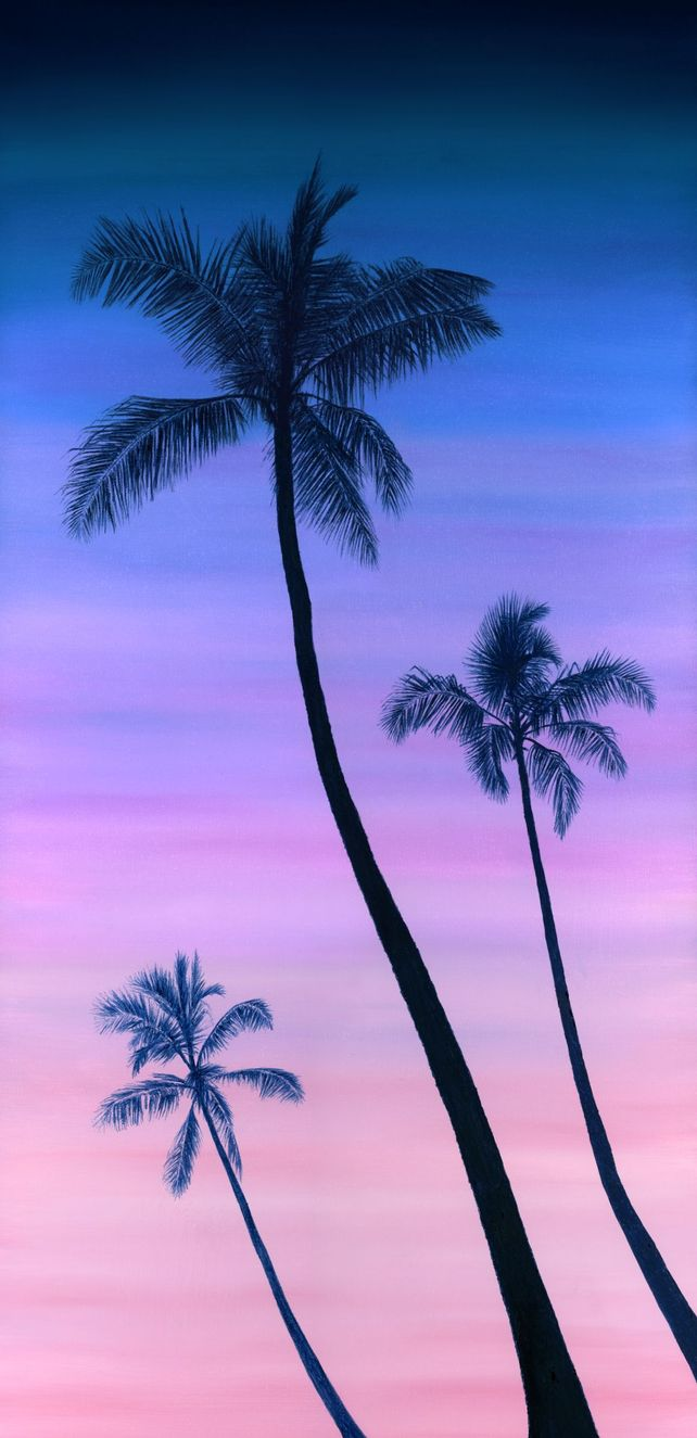 Sunset by the Palm Trees