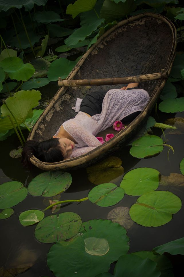 The Lotus Lake V