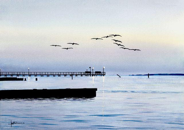 Dawn's Early Flight (Pelicans)