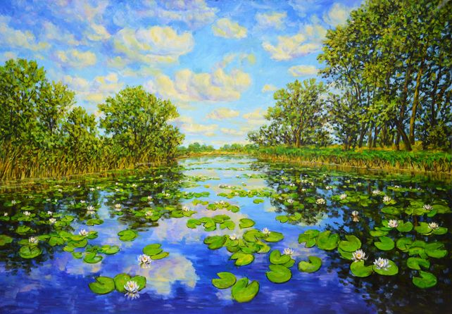 Landscape with water lilies.