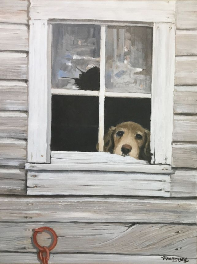Dog in the Shadows-too