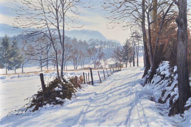January 7, path in the snow at Saint Vincent