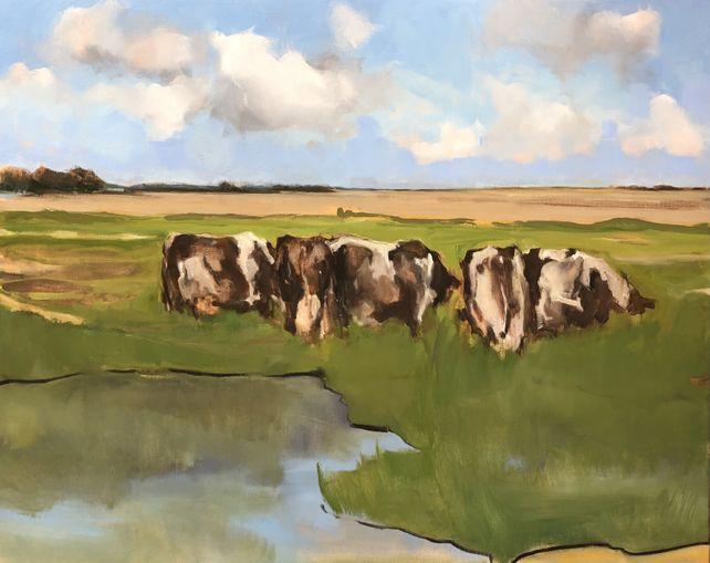 'Nieuwe koeien