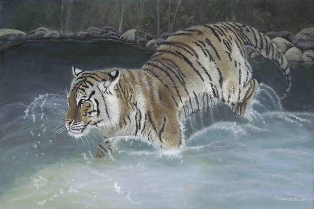Taking the Plunge (Siberian Tiger)