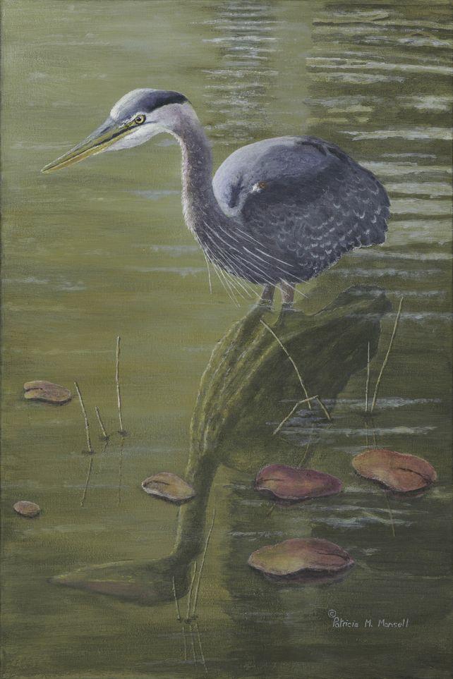 Stillness (Great Blue Heron)