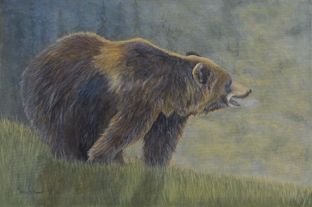 Mountain Man (Grizzly)