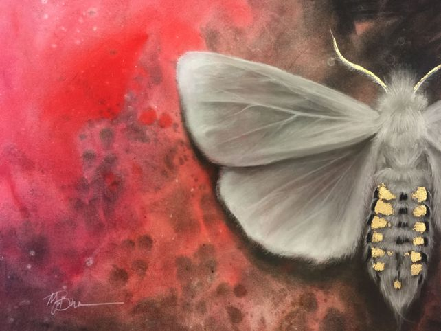 White Moth on Red Abstract