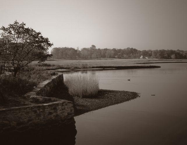 Mill Pond, Westport, CT