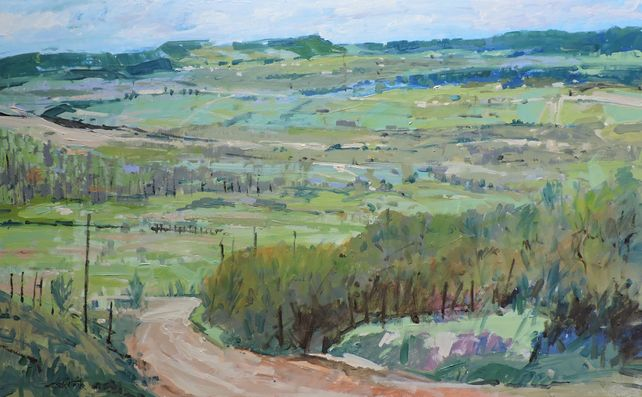 Oak Valley Spring