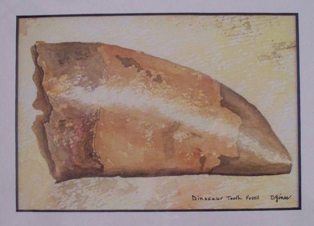Dinosaur Tooth Fossil